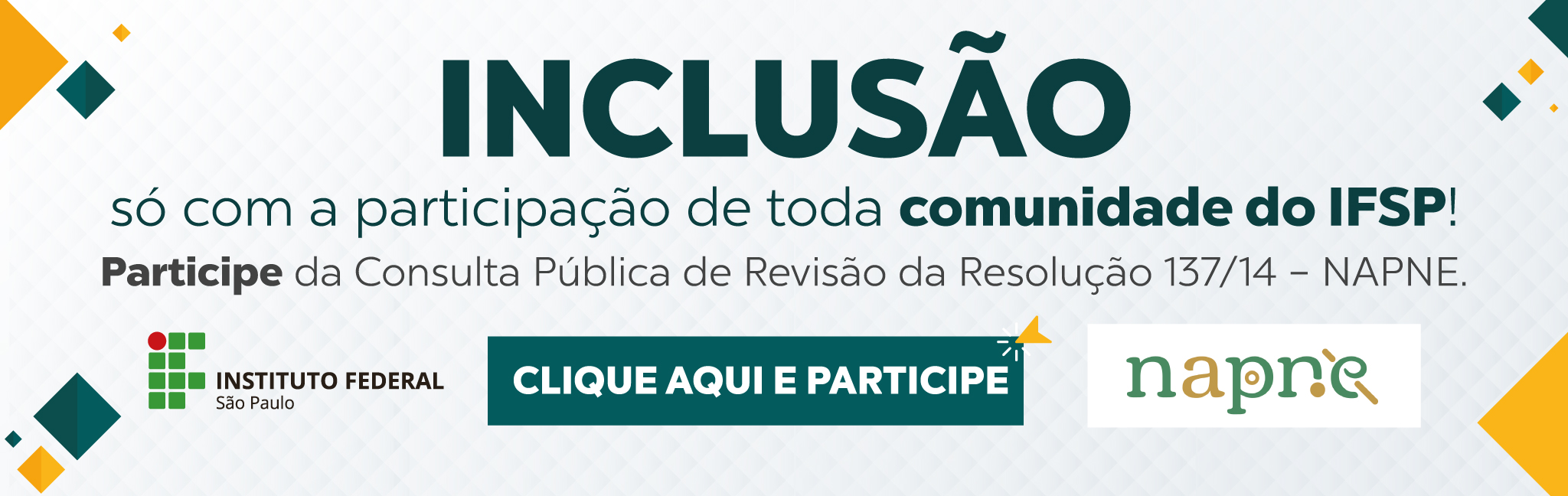 Consulta pública - Minuta do Regulamento do Napne